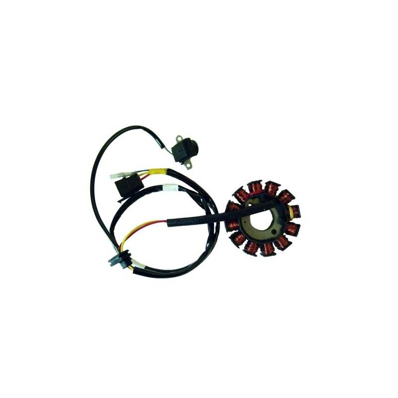 Stator de encendido electronico para moto con referencia 04163053