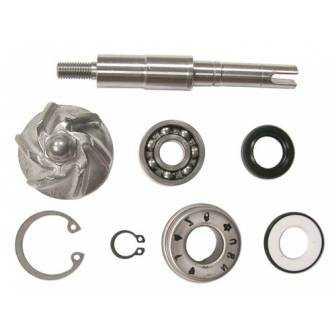 Kit Reparacion Bomba Agua Motor Honda 125-150