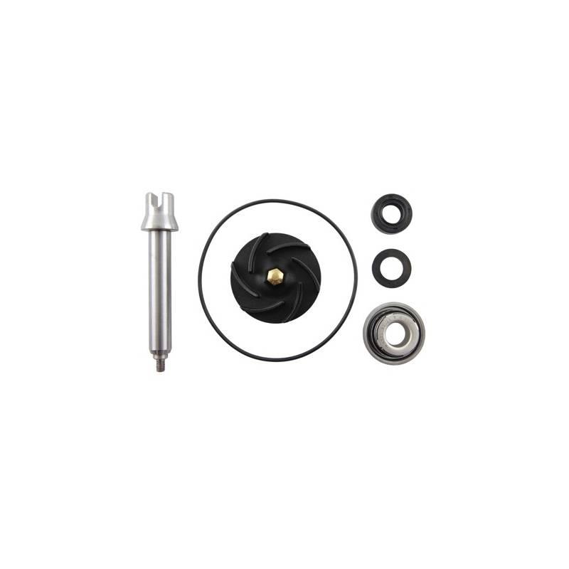 Kit Reparacion Bomba Agua Motor Piaggio 400 04
