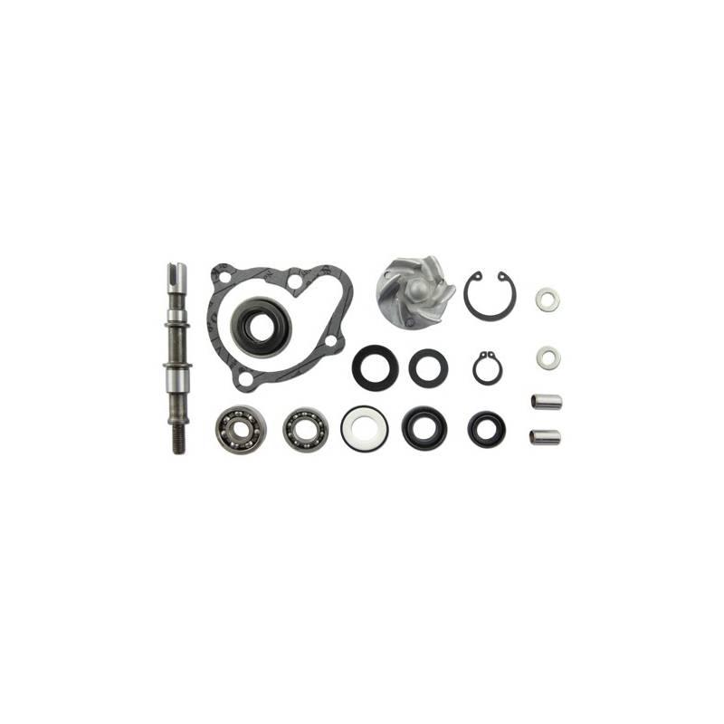 Kit Reparacion Bomba Agua Motor X-Citing 250