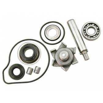 Kit Reparacion Bomba Agua Motor Pcx 125 10-