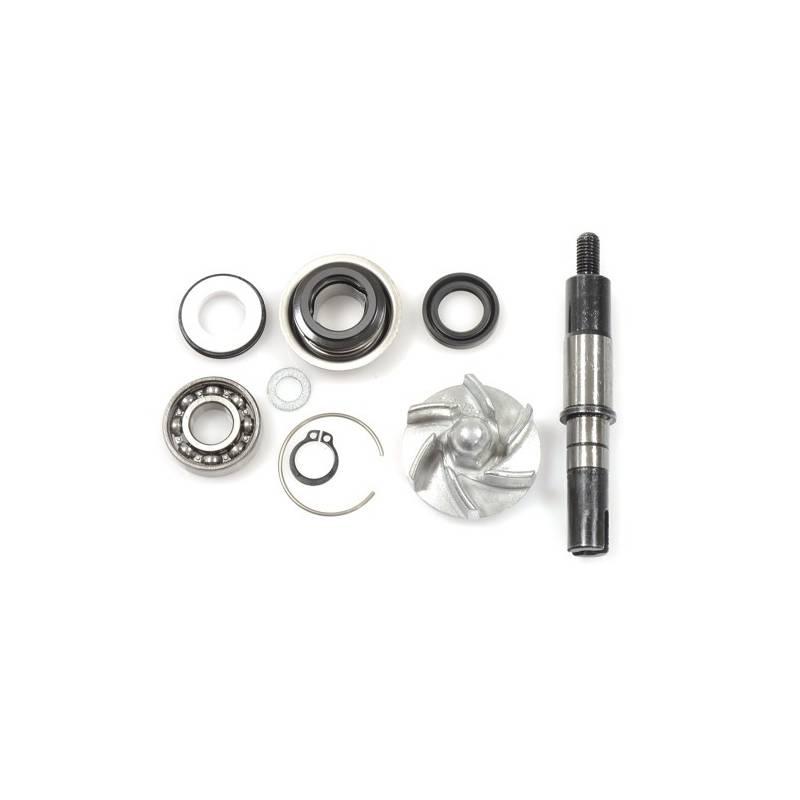 Kit Reparacion Bomba Agua Motor Daelim S3 125