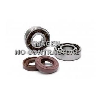 Kit rodamientos y retenes cigüeñal Honda DYLAN/SH 125-150