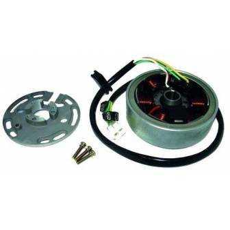 Volante magnético para moto con referencia 04168513