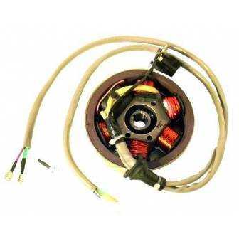 Volante magnético para moto con referencia 04168530