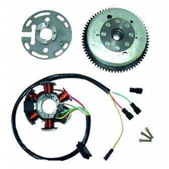 Volante magnético para moto con referencia 04168535