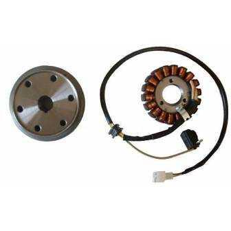 Volante magnético para moto con referencia 04168543