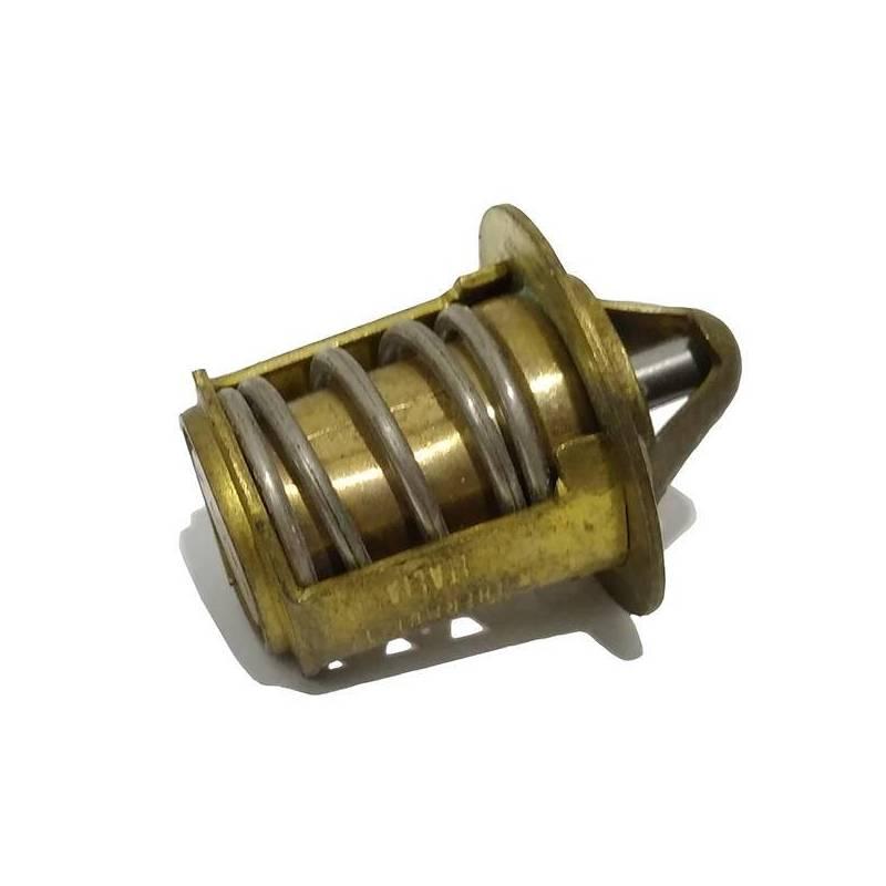 Termostato motor AM6