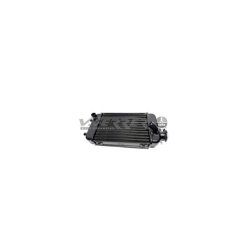 Radiador Beta Trueba RK6-RX6