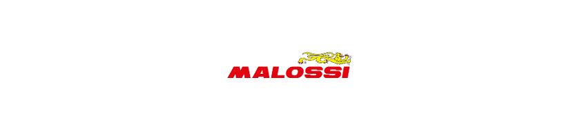 Recambios Malossi Moto | Motorecambios VFerrer