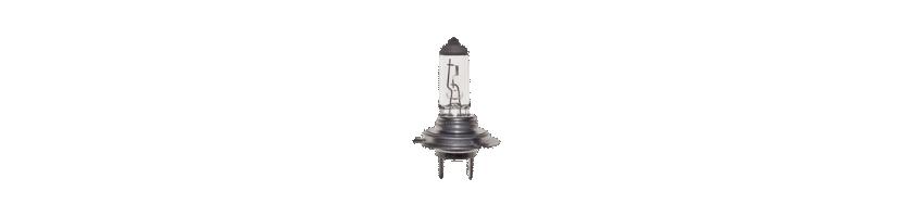 Lámparas Philips y Amolux 12v casquillo H7 para moto